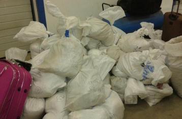 Украинские таможенники пропустили в Венгрию почти тонну янтаря