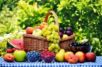 Майские заморозки уменьшили урожай ягод и фруктов на 30%