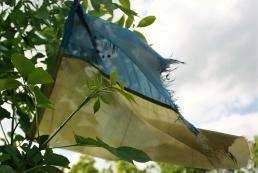 За прошлые сутки в зоне АТО погибли 2 военных, 5 – ранены