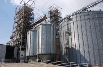 Акционер агрохолдинга «Агросвит» Бичуч «повесил» на компанию 400 млн грн еще до начала публичного конфликта