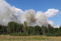 На Днепропетровщине горит лес: к тушению привлекли Нацгвардию и авиацию