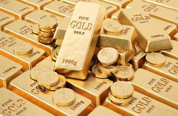 В Европе арестовали полтонны золота окружения Януковича
