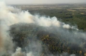 На Харьковщине произошел масштабный лесной пожар