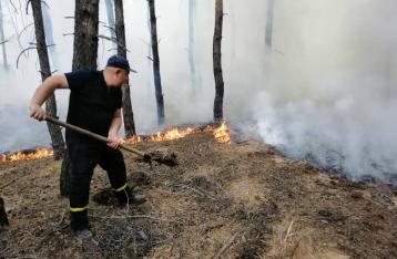 Число жертв лесного пожара на Луганщине возросло до 5 человек