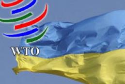 Украина инициирует пересмотр условий своего членства в ВТО
