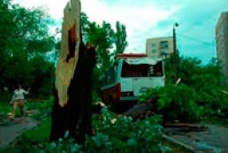 В результате урагана в Киеве травмировано пять человек