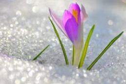 Кульбида уверил, что весна начнется по расписанию