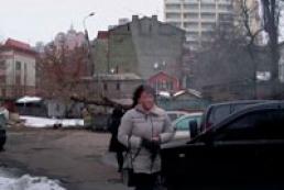 Киевлянка, которую едва не убило падающее дерево, стала звездой YouTube