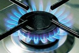 Азаров: Газовые монополии в Украине утратили чувство реальности