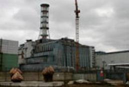 Гуляют там животные... или Нужен ли заповедник в Чернобыле?