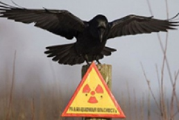 Украина сегодня чтит память жертв аварии на ЧАЭС