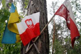 Волынский облсовет осудил резолюцию польского Сейма