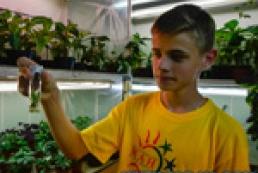 Літо юних вчених: клонування, пробірки і гербарії