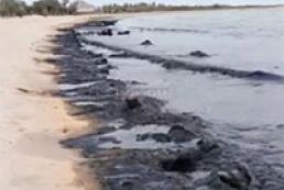 Берег Черного моря покрылся зловонной черной массой